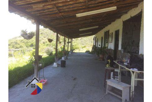 terraza.finca-bolivarvalle