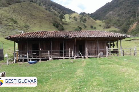 finca-ganadera-caballos-sevilla-valle-gestiglovar