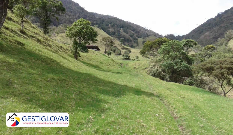 finca-ganadera-camino-sevilla-valle-gestiglovar
