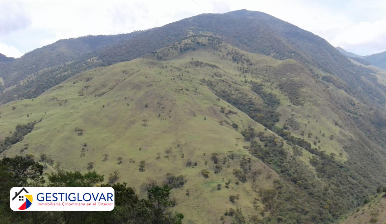 finca-ganadera-paisaje-sevilla-valle-gestiglovar