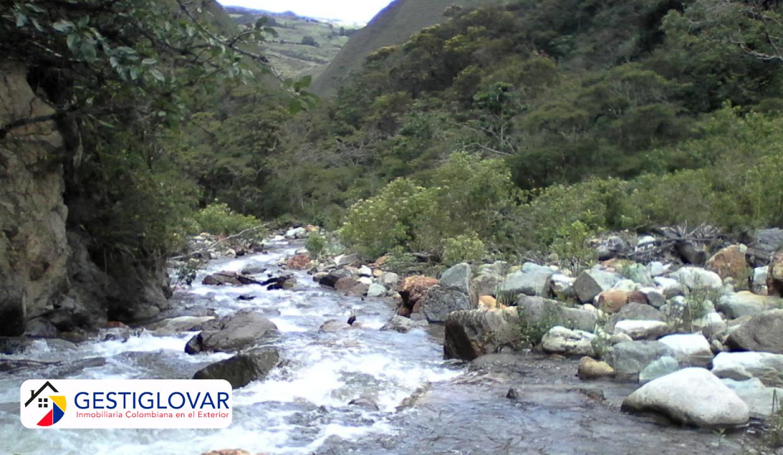 finca-ganadera-rio-sevilla-valle-gestiglovar
